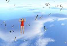 Petra Cortright, 'Clouds over the Ocean_upsidedownwithstuckseagull_snowseagulls_looksgood2_NOlineup_withLucyfall_mute_blkbg_wide_60tops,' 2015, Depart Foundation