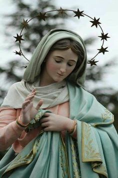 Our Lady of the Immediate Consolation: Muriaé, June 1993 Apparition at Santa Rosa Farm Mama Mary, Mary I, Holy Mary, Religious Pictures, Religious Icons, Blessed Mother Mary, Blessed Virgin Mary, Jesus Mary And Joseph, Images Of Mary
