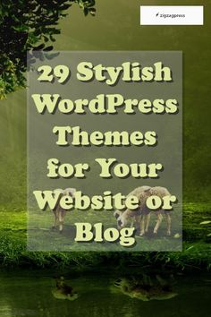 29 Stylish WordPress Themes for Your Website or Blog - http://zigzagpress.com/themes/?ref=7f39f8317fbdb1988ef4c628eba02591