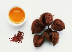 Make Your Own Organic Natural Peach or Salmon Fabric Dyes: Annatto Seeds