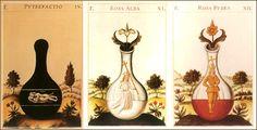 """Le tre fasi dell'Opera alchemica: Nigredo, Albedo, Rubedo. Dal trattato """"Splendor Solis"""", custodito presso la British Library di Londra. Realizzato nel 1582, è erroneamente attribuito a Salomone Trismosin, forse uno pseudonimo di Ulrich Poysel, maestro del mitico Paracelso. Nel codice sono rappresentate con eccellente profusione di dettagli """"note realizzative"""" provenienti dai sentieri della Qabbalah, dell'Astrologia e dell'Alchimia."""