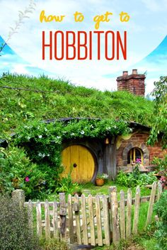 Do you wanna see hobbits in New Zealand? Check out how to get to Hobbiton!