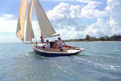 Dream boat... the Australian Scruffie Secret 20.