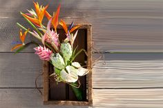 DECO.Flowers.050.900x600