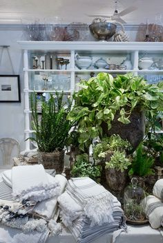 Habitually Chic®: Club Hamptons - love the green plants with the neutral products and the cement planters with the soft fiiber