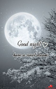 good morning greetings have a great day ~ good morning greetings have a great day Night Quotes Thoughts, Funny Good Night Quotes, Good Night Messages, Good Morning Quotes, Good Night Friends, Good Night Wishes, Good Night Sweet Dreams, Monday Greetings, Good Night Greetings