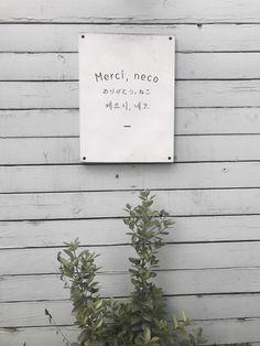 #메르시네코