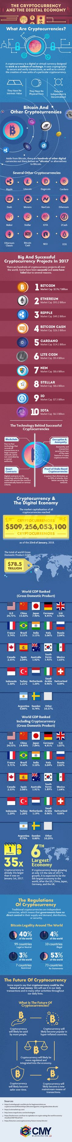 The Cryptocurrency and the Digital Economy - #infographic