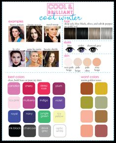 Cool Winter from Cool & Brilliant Palette