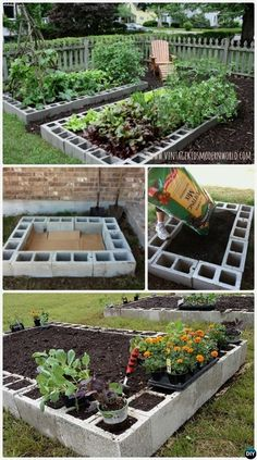 Cinder Block Garden — The cinder block has long been known as critical item of masonry that's invaluable in the construction of buildings and other such structures. It's been allowed to live a dual…MoreMore  #BackyardGardens