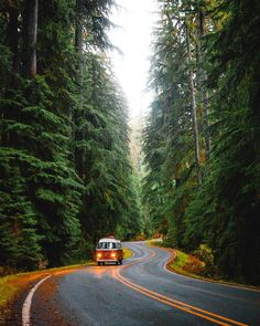 Weekend trips to the rainforest 🌲🚐 Places To Travel, Travel Destinations, Places To Go, Nature Photography, Travel Photography, Weekend Trips, Nature Pictures, Belle Photo, Dream Vacations