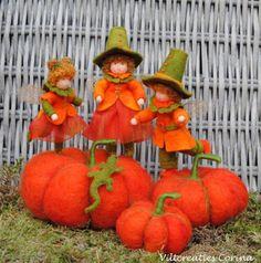 Pumpkin Gnomes