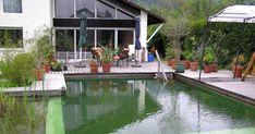 Ungetrübter Badespaß ganz ohne Chemie: Immer mehr Gartenbesitzer erfüllen sich den Traum vom eigenen Schwimmteich. Noch dazu lässt sich das Gewässer gestalterisch viel besser in den Garten integrieren als ein konventioneller Swimming-Pool.