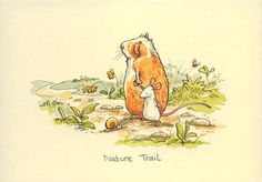 Two Bad Mice - Nature Trail