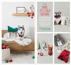PetSmart Holiday Book 2018 Ads and Deals Browse the PetSmart Holiday Book 2018 ad scan and the complete product by product sales listing. Books 2018, Dog Gifts, Rustic Style, Mittens, Coupons, Kids Rugs, Ads, Holiday, Fingerless Mitts