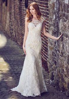 fba497d0953 Maggie Sottero Everly Wedding Dress Wedding Dress With Veil