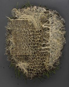 Image - Exercises in Root System Domestication ( Textile Fiber Art, Textile Artists, Abstract Sculpture, Sculpture Art, Stylo 3d, Fibre And Fabric, A Level Art, Environmental Art, Land Art
