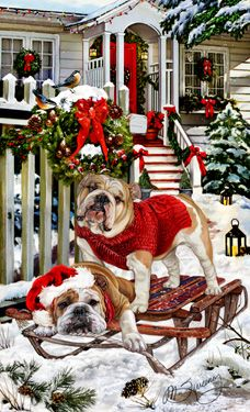 """New for 2015! English Bulldog Christmas Holiday cards are 8 1/2"""" x 5 1/2"""" and come in packages of 12 cards. One design per package. All designs include envelopes, your personal message, and choice of greeting.Select the inside greeting of your choice from the menu below.Add your custom personal message to the Comments box during checkout."""