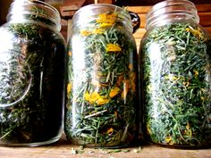 great website with herbal/pantry remedies