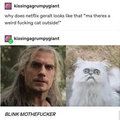 """Kissingagrumpygiant why does netflix geralt looks like that """"ma theres a weird fucking cat outside! The Witcher Geralt, Geralt Of Rivia, Funny Cute, Hilarious, Dankest Memes, Funny Memes, Cats Outside, Book Tv, Comic"""