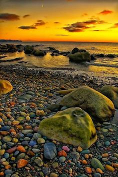Golden Lights on a Rocky Shore - Newfoundland Beautiful Sunset, Beautiful World, Beautiful Images, Gros Morne, Rocky Shore, Newfoundland And Labrador, Newfoundland Canada, Amazing Nature, Beautiful Landscapes