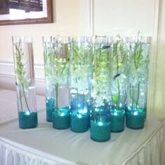 Aquarium centerpieces. Make sure the fish have enough room, are fed well, and are properly taken care of after the event!