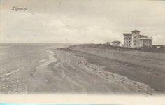 #postcard #cartolina #lignano #lignanopineta #lignanosabbiadoro #friuli #fvg #italia #vintage www.tommyholiday.it