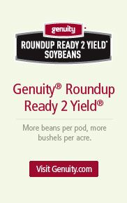 Monsanto's Roundup is making soil unable to grow crops in the future.