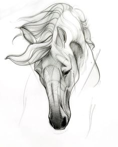 horse tattoos for women ; horse tattoo for men ; Horse Head Drawing, Horse Drawings, Art Drawings Sketches, Animal Drawings, Drawing Art, Horse Tattoo Design, Horse Tattoos, Tattoo Sketch, Horse Sketch