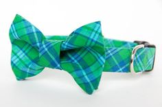 Bowtie Dog Collar  Blue Ridge Tartan by pecanpiepuppies on Etsy, $35.00
