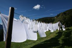 Free clothes drying.....I wish more suburban developments would allow these!