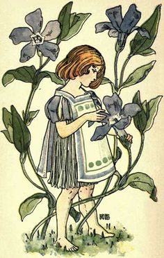 Periwinkle, Vinca minor ~friendship, conjugal love, peace~  (Vinca- Latin vincere= `to overcome') Periwinkle by Nellie Benson, 1901