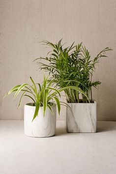 Marble Shape Planter | Urban Outfitters