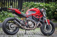 Ducati Monster 821 / Multistrada 950 Exhaust Guard Bolt Kit anodised preventing rust lightweight than OEM. Ducati 821, Moto Ducati, Ducati Cafe Racer, Ducati Motorcycles, Cafe Bike, Cafe Racer Bikes, Ducati Monster 821, Street Fighter Motorcycle, Super Bikes
