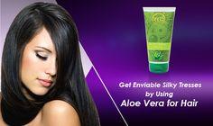 Aloe Vera Shampoo: Buy Natural Aloe Vera Shampoo for Hair Growth Natural Aloe Vera, Natural Oils, Aloe Vera Shampoo, Anti Dandruff Shampoo, Oily Scalp, Aloe Vera For Hair, Smooth Hair, Fall Hair, How To Run Longer