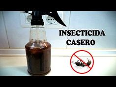 CÓMO ELIMINAR LAS HORMIGAS / INSECTICIDA CASERO - Trucos | Tips | Consejos Insecticide, Garden Insects, Spray Bottle, Cleaning Supplies, Youtube, Videos, Tips, Ants, Gardens