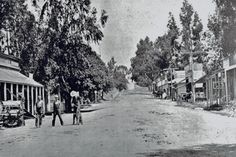 Turn of the Century Photo. Fig & Main looking North