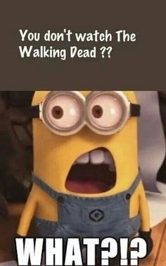 If u just finished seeing this funny meme turn on ur tv,go on Netflix or on demand,type the walking dead, and start watching this right this second. You'll be thanking me after watching the first episode.......awesome show!!!