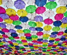 Funny pictures about Hundreds Of Umbrellas Float Above The Streets In Portugal. Oh, and cool pics about Hundreds Of Umbrellas Float Above The Streets In Portugal. Also, Hundreds Of Umbrellas Float Above The Streets In Portugal photos. Portugal, Umbrella Street, Umbrella Decorations, Colorful Umbrellas, Coat Of Many Colors, Umbrella Wedding, Art Prints For Home, Under My Umbrella, Images Google
