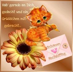 Good Afternoon, Good Morning, Emoticon, Collage, Teddy Bear, Animals, Photos, Good Morning Images, Morning Sayings