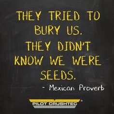 #PilotQuotes #PilotCrushtec Pilot Quotes, Proverbs, Wise Words, Favorite Quotes, Architecture, Style, Arquitetura, Swag, Word Of Wisdom