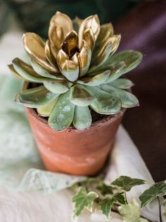 Gold Spray painted succulents | Rembo Wedding Dresses | Bohemian Outdoor Wedding | Inspiration Shoot | The Letchworth Centre | Styling From Fleur De Lace Weddings And Events | Flowers By Pots In Bloom | Images by Hayley Pettit Photography | http://www.rockmywedding.co.uk/ethereal-woodland-wedding-inspiration/