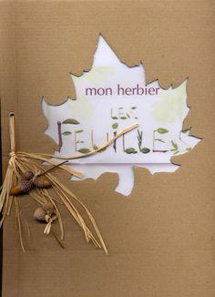 exemples d 39 herbiers 6eme s v t pinterest herbier 6 me herbier et exemple. Black Bedroom Furniture Sets. Home Design Ideas