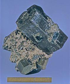 Pyrosmalite-(Fe), (Fe++,Mn)8Si6O15(OH,Cl)10, Nordmark Odal Field, Filipstad, Värmland, Sweden. Scale below. Uploaded by: Rock Currier