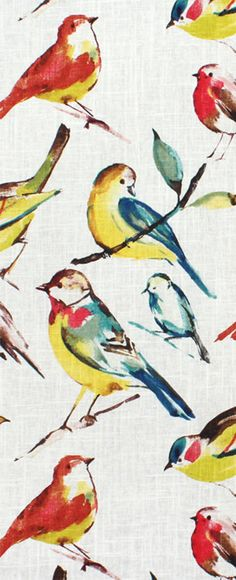 Richloom Birdwatcher Summer Fabric for rooms with yellow, coral, red, green, teal or yellow decor