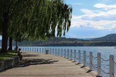 Sea Monsters and Ice Cream: Hiking With Kamino in Kelowna British Columbia from @BarefootNomads #explorebc