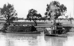 Paddle-steamer Lancashire Lass and barge at Wilcannia, on the Darling. Murray River, Steam Boats, Shock Wave, Paddle Boat, Months In A Year, Australia Travel, Historical Photos, Steamers, Transportation