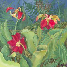 Art Collection from Linda Doyle Art Flowers, Flower Art, Artwork, Painting, Collection, Ideas, Art Floral, Work Of Art, Auguste Rodin Artwork