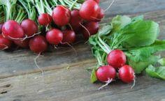 Los cultivos del frío: http://wakan.org/los-cultivos-del-frio/