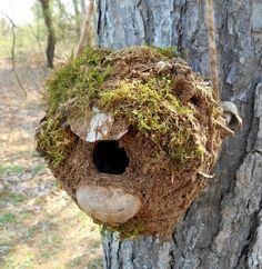 Birdhouse Rustic Outdoor Garden Art Bird House by bearpawrustics